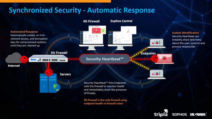 Benefícios de integrar Firewall e Endpoint Protection seguranca-da-informacao